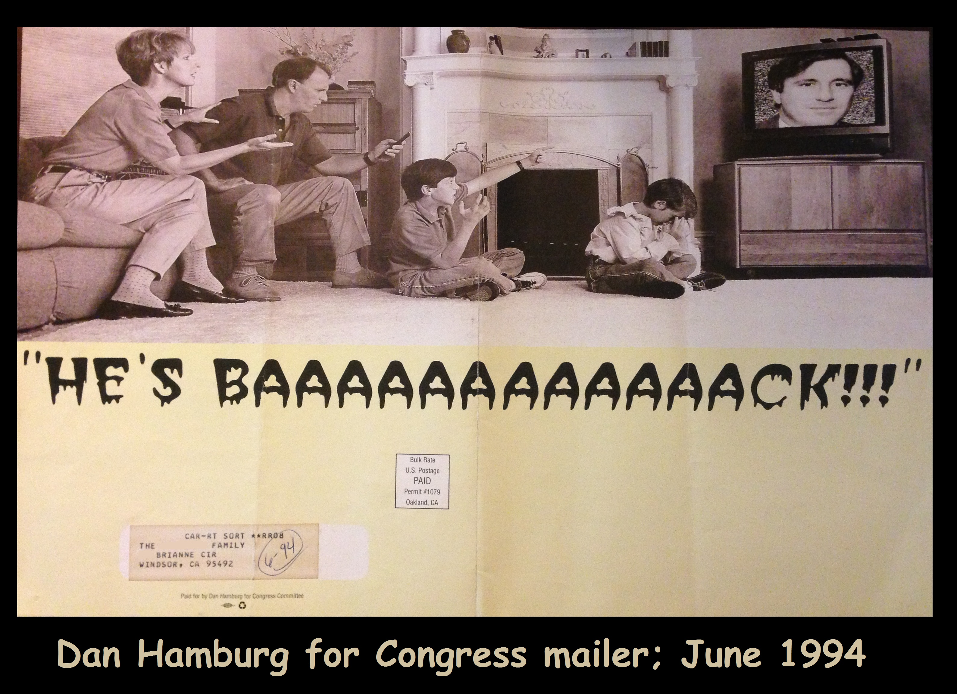 1994-06-Dan Hamburg for Congress